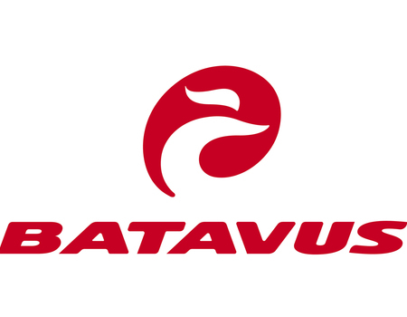 Sport Lieven bvba - Pittem - Stad & Hybride - Batavus